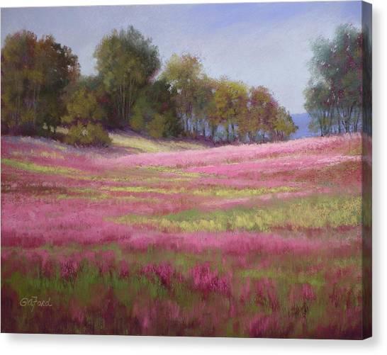 Passion Field Canvas Print by Paula Ann Ford