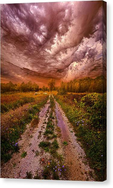 Dirt Road Canvas Print - Passion Within Chaos by Phil Koch