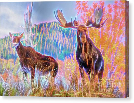 Canvas Print featuring the photograph Pastel Moose Couple by Ray Shiu