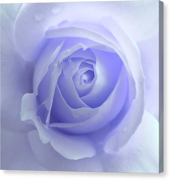 Pastel Purple Rose Flower Canvas Print