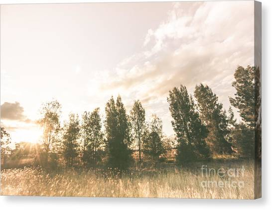 Autumn Scene Canvas Print - Pastel Sunset Forest by Jorgo Photography - Wall Art Gallery