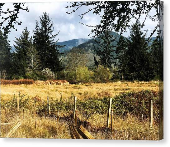 Canvas Print featuring the photograph Pasture, Trees, Mountains Sky by Chriss Pagani