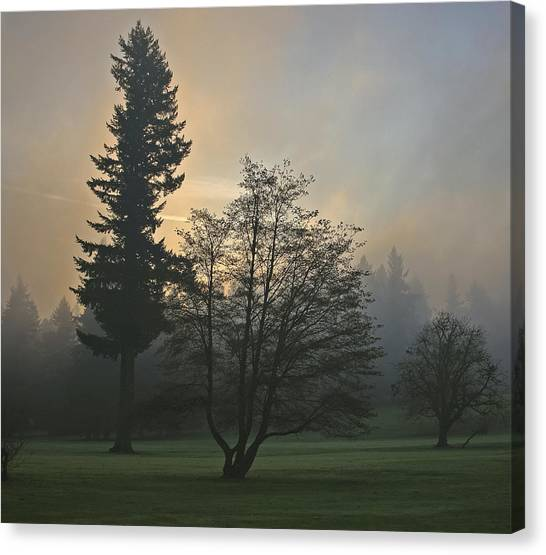 Patchy Morning Fog Canvas Print