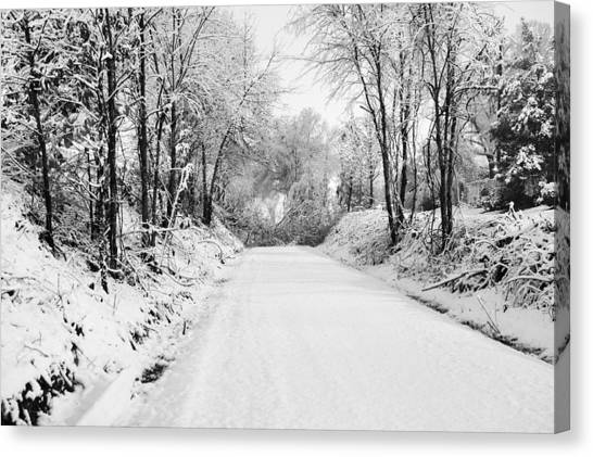 Path In The Snow Canvas Print by Michelle Shockley