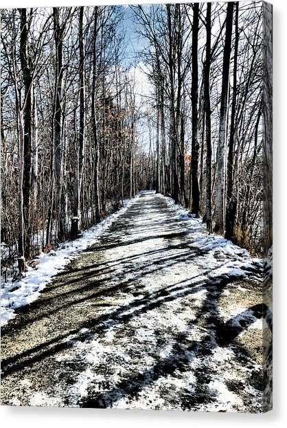 Path In Winter Canvas Print