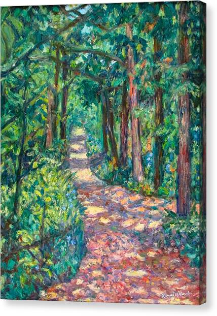Path On Sharp Top Canvas Print