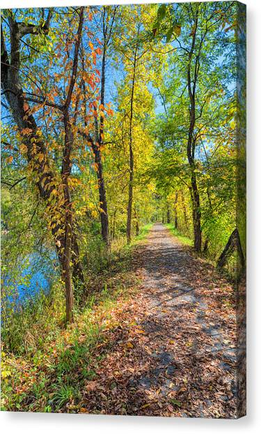 Path Through Fall Canvas Print