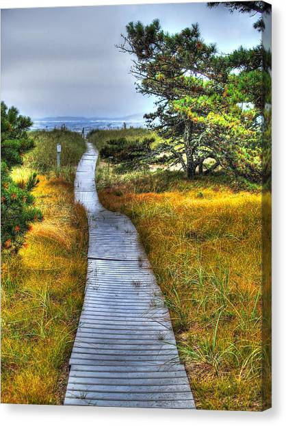 Seagrass Canvas Print - Path To Bliss by Tammy Wetzel