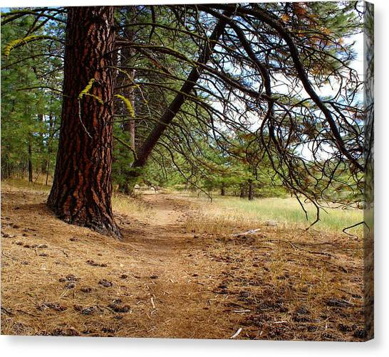 Canvas Print featuring the photograph Path To Enlightenment 1 by Ben Upham III