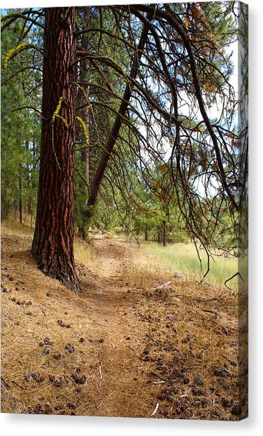 Canvas Print featuring the photograph Path To Enlightenment 2 by Ben Upham III