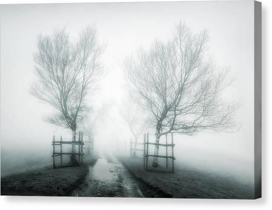 Path To Nowhere II Canvas Print