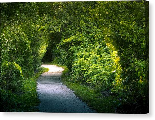 Bass Fishing Canvas Print - Path To The Secret Garden by Marvin Spates