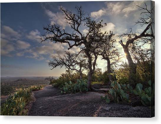 Pathway On Top Of Enchanted Rock Canvas Print