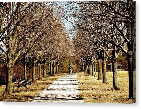 Pathway Through Trees Canvas Print