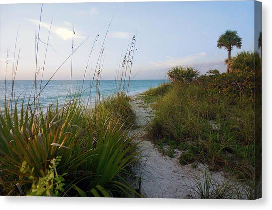 Pathway To Barefoot Beach  In Naples Canvas Print