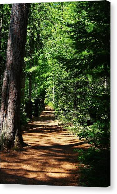 Pathway To Peacefulness Canvas Print