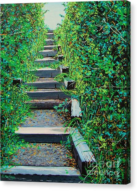 Pathway To Puget Sound Canvas Print by Stephen Ponting