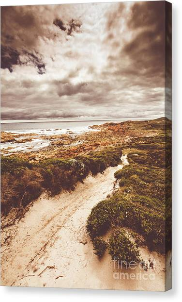 Sandy Canvas Print - Pathways To Seaside Paradise by Jorgo Photography - Wall Art Gallery