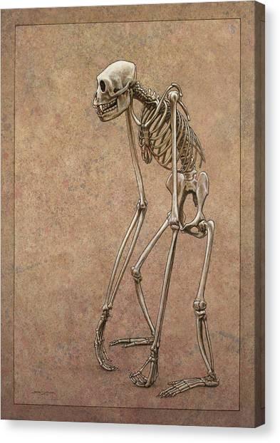 Bones Canvas Print - Patient by James W Johnson