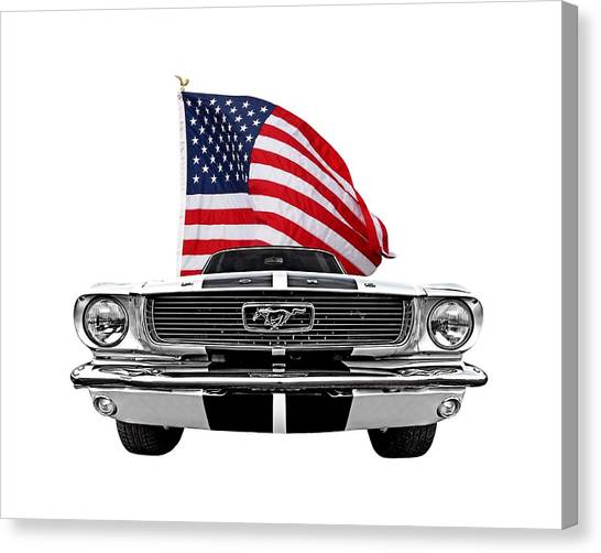 American Independance Canvas Print - Patriotic Mustang On White by Gill Billington