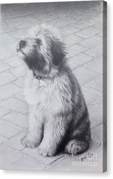 Patsy's Puppy Canvas Print