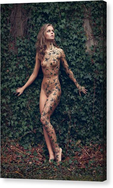 Body Canvas Print - Patterns In The Ivy by Martin Zvonar