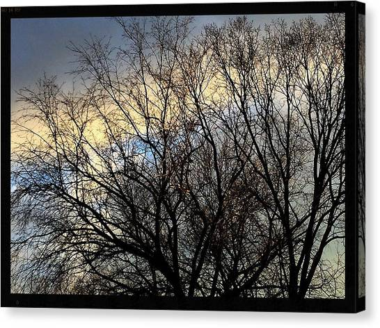 University Of Illinois Canvas Print - Patterns In The Sky by Frank J Casella