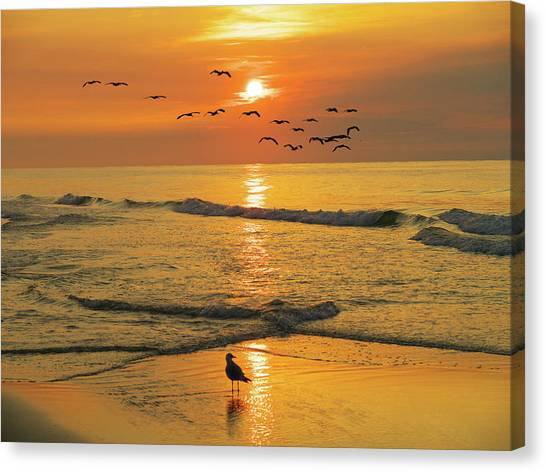 Pawleys Island Sunrise Canvas Print
