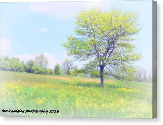 Peace On The Hillside Canvas Print