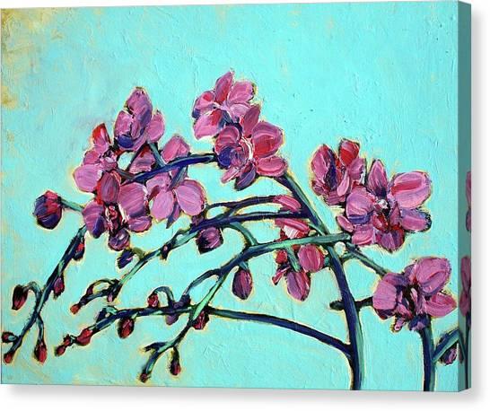 Peace Orchids Canvas Print by Sheila Tajima