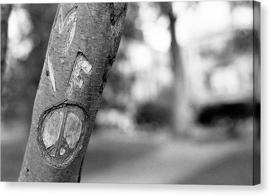 Peace Sign Carving, 1975 Canvas Print