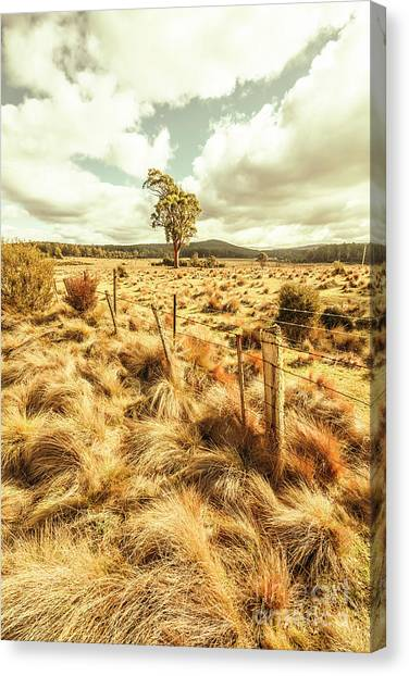 Moorland Canvas Print - Peaceful Country Plains by Jorgo Photography - Wall Art Gallery