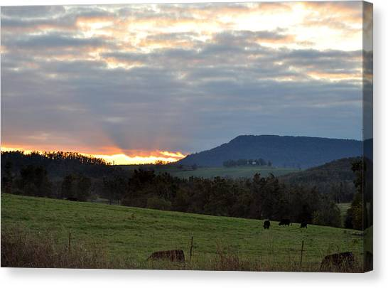 Peaceful Evening Canvas Print by Jan Amiss Photography
