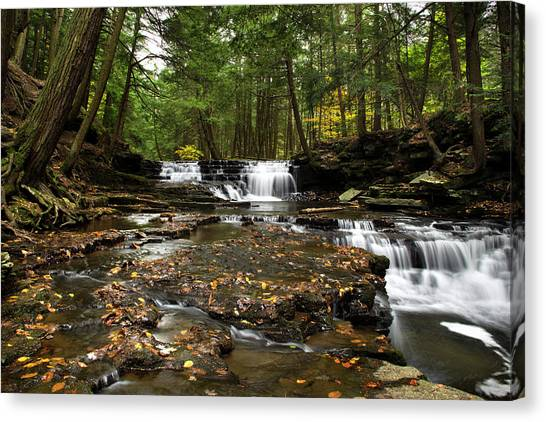 Peaceful Flowing Falls Canvas Print