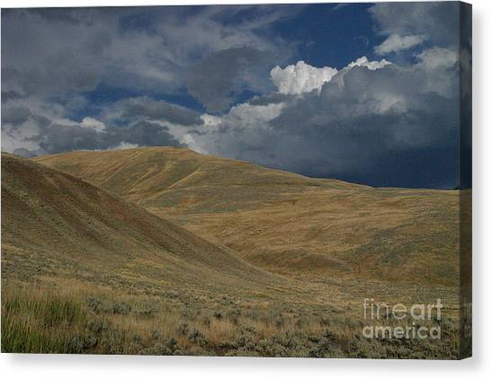 Peaceful Intensity Canvas Print