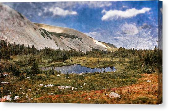 Peaceful Meadow  Canvas Print by Garett Gabriel