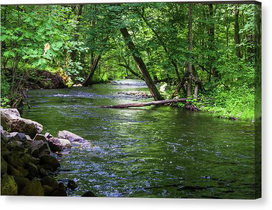 Canvas Print featuring the photograph Peaceful Stream by Robert McKay Jones