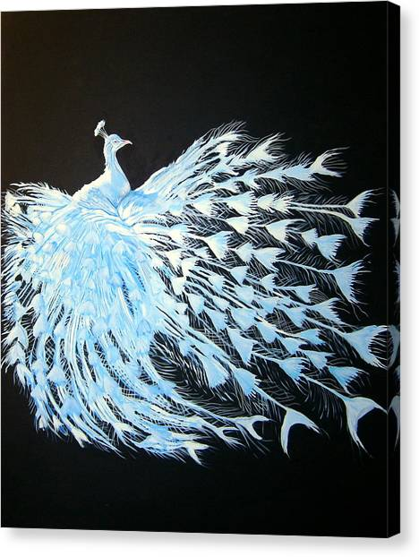 Peacock 1 Canvas Print