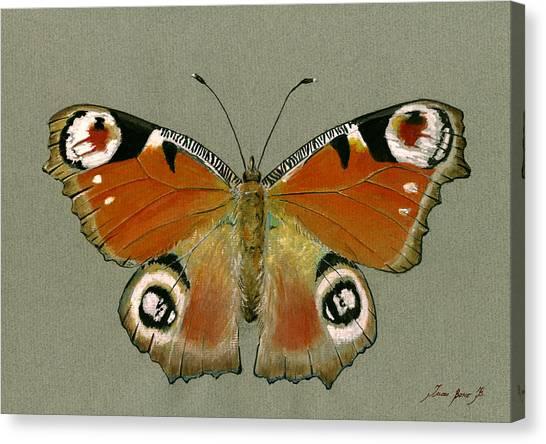 European Canvas Print - Peacock Butterfly by Juan Bosco