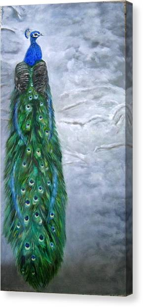 Peacock In Winter Canvas Print