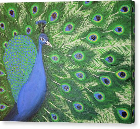 Kappa Sigma Canvas Print - Peacock by Tammy Groves Thornton