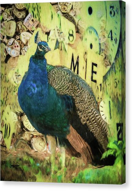 Peacock Time Canvas Print