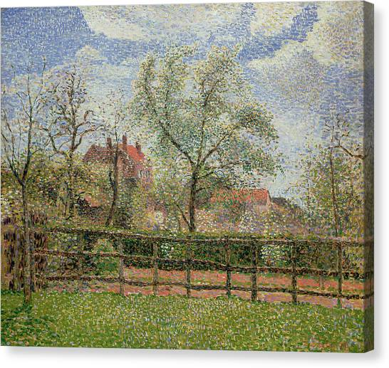 Pointillism Canvas Print - Pear Trees And Flowers At Eragny by Camille Pissarro