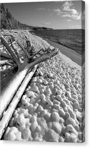 Pebble Beach Winter Canvas Print