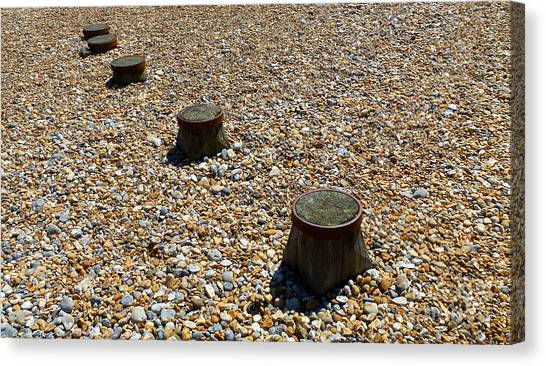 Pebbles And Wood Canvas Print