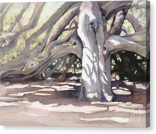 Pechanga Great Oak Canvas Print