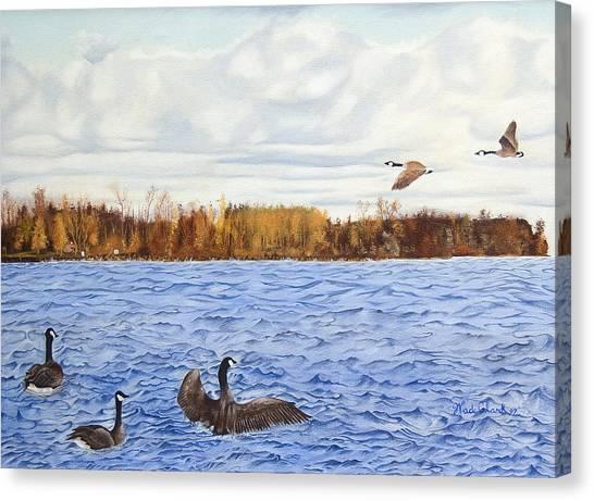 Peche Island Canadas Canvas Print