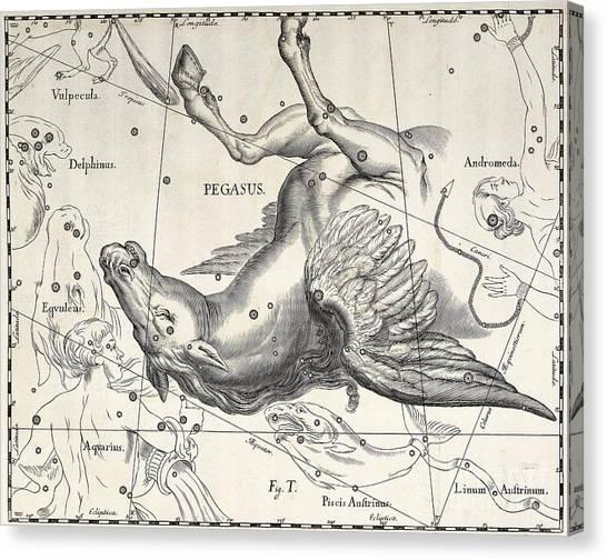 Pegasus Canvas Print - Pegasus by Johann Hevelius