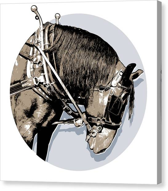 Prince Canvas Print - Pei Tour Horse by Greg Joens
