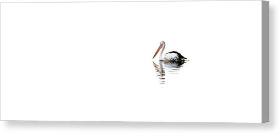 Pelicans Canvas Print - Pelican Adrift by Az Jackson